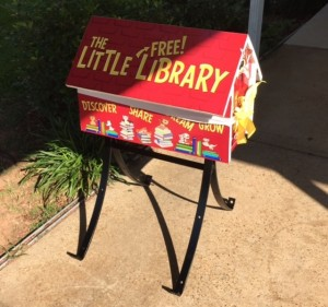 Little Library Install